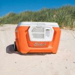 cooler-orange1-500x500